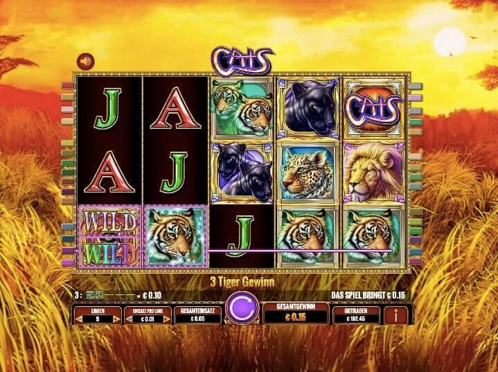 Cats Slot Win