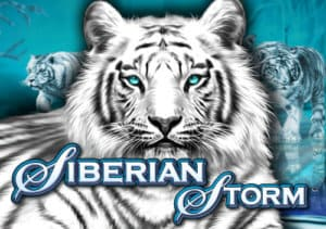 Siberian Storm Slot Logo